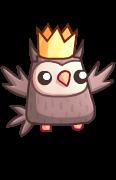 Owl_shiny