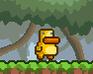 Play Gravity Duck