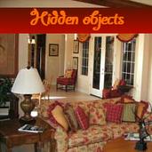 Play Hidden objects