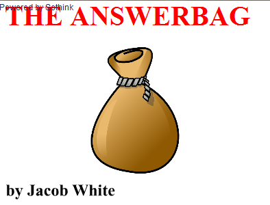 Play The Answer Bag