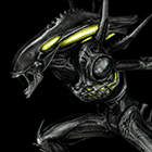 avatar for FelixF12