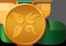 Elements medal 130x90