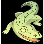 Croc happy