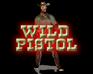 Play Wild Pistol