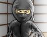 Play Ninja