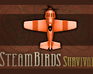 Play Steambirds: Survival
