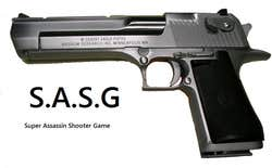 Play S.A.S.G: Super Assassin Shooter Game
