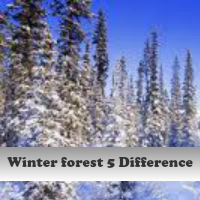 Play Winter forest 5 Difference