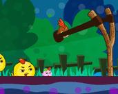 Play Angry Chicks
