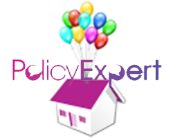 Play The Policy Expert Game