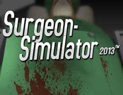 Play Surgeon Simulator 2013