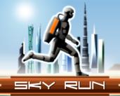 Play Sky Run