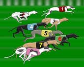 Play Greyhound Racer