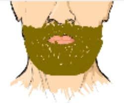Play Grow Me A Beard