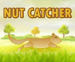 Play Nut Catcher