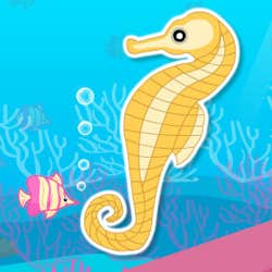 Play Finding Seahorses