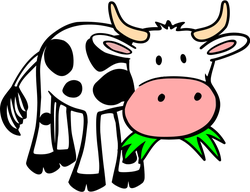 Play Cow Race