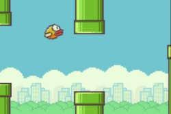 Play Fly Bird