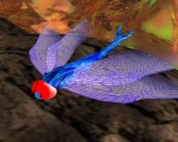 Play DragonFly Racer PRO