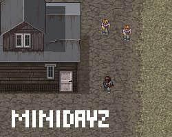 Play MiniDayZ