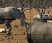 Play Animal Hunter 3D: Africa