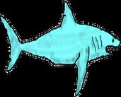 Play Shark Swim