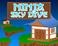 Play Ninja Sky Dive