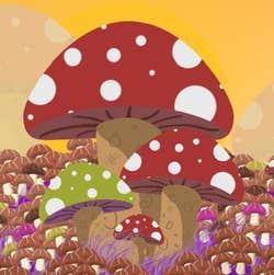 Play Mushroom Farmers