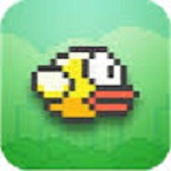 Play Flappy Bird (MY GAME)