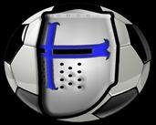 Play Fantasy Fighting Football Fever Forever F