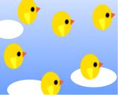 Play Bird Army