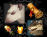 Play Rat Clicker 2
