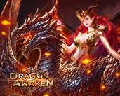 Play DragonAwaken
