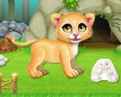 Play Baby Lion Care