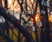 Play Psy - Little Life