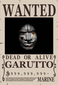 avatar for garutto