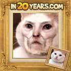 avatar for Shaine