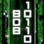 avatar for Bob10110