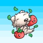 avatar for Mattwhiz1