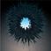 avatar for emoll