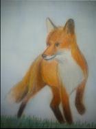 avatar for BlueFox57