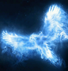 avatar for Talostd