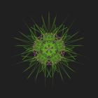 avatar for cunnyravu