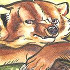 avatar for Axiluvia