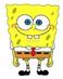 avatar for Brantshanker13