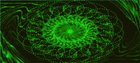 avatar for aniper
