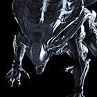 avatar for HULKSMASHEDU