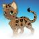 avatar for cat1432