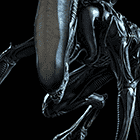 avatar for Xeonyx