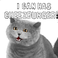 avatar for DoggyKitty